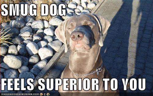 Smug Dog
